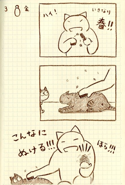 Cat_Grooming_nekoraenikki20130308.jpg