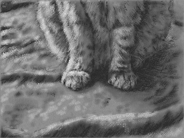 nintendo_3ds_ll_cat_sketch_20130310.jpg