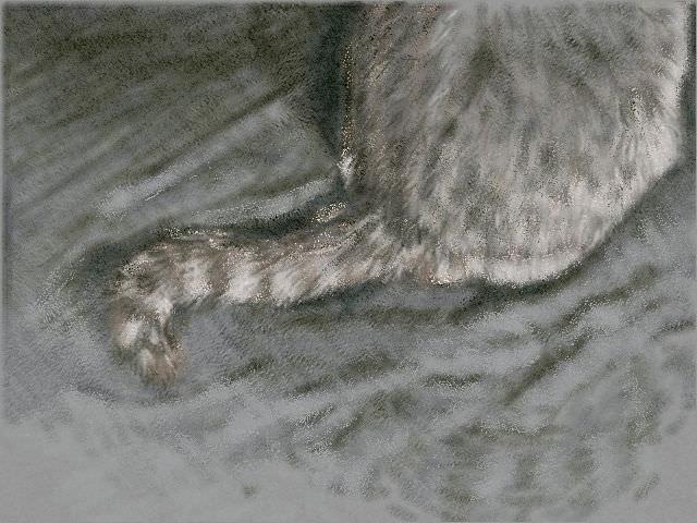 nintendo_3ds_ll_cat_sketch_20130314.jpg