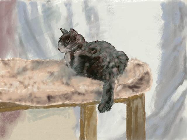 nintendo_3ds_ll_cat_sketch_20130316.jpg