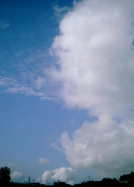 Polaroid_a520_sky_20130404-4.jpg
