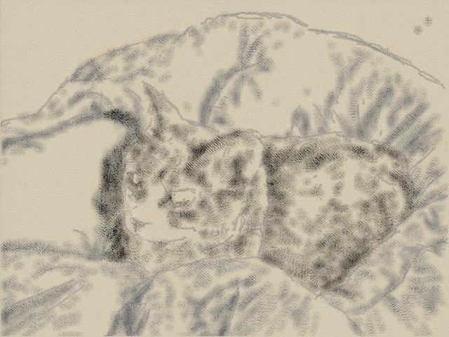 nintendo3ds_ll_cat_sketch_20130418.jpg
