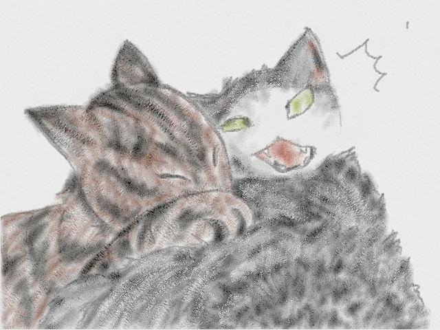 nintendo_3ds_ll_cat_sketch_20130406.jpg