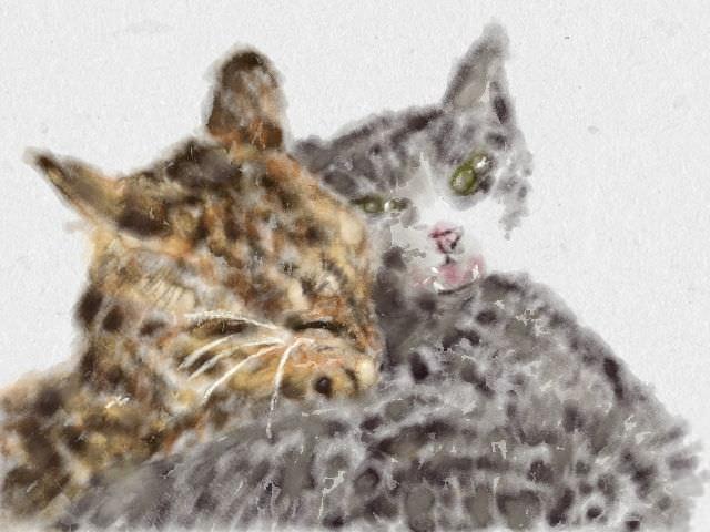 nintendo_3ds_ll_cat_sketch_20130408.jpg
