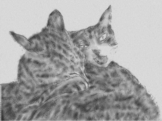 nintendo_3ds_ll_cat_sketch_20130412.jpg