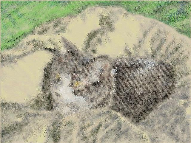 nintendo_3ds_ll_cat_sketch_20130422.jpg