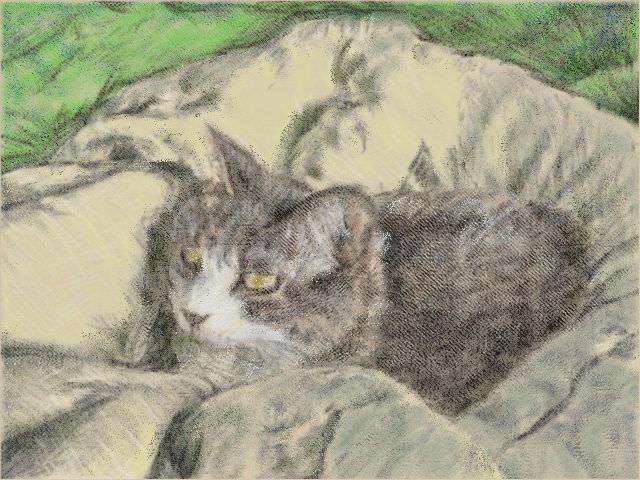 nintendo_3ds_ll_cat_sketch_20130426.jpg