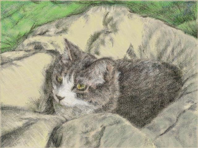 nintendo_3ds_ll_cat_sketch_20130428.jpg