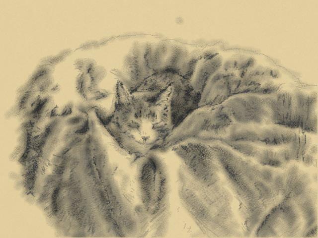 Nintendo 3DS LL_Cat Sketch_20130521.jpg