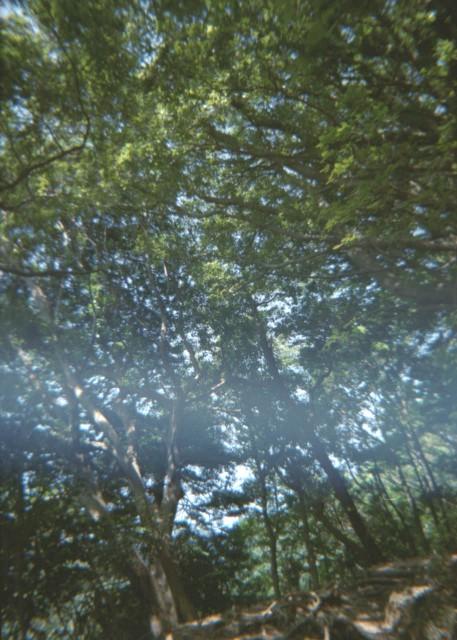 Plamodel Camera_takaosan2-1.jpg