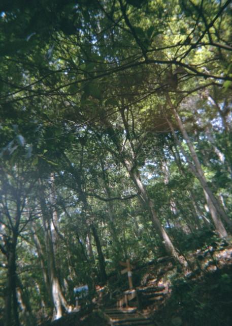 Plamodel Camera_takaosan2-2.jpg