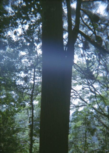 Plamodel Camera_takaosan2-4.jpg
