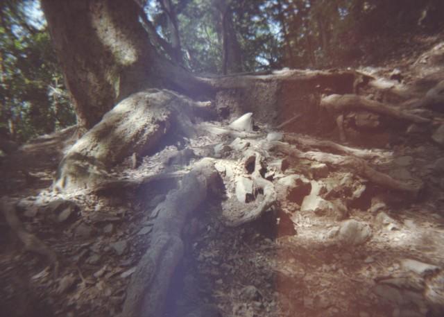 Plamodel Camera_takaosan3-2.jpg