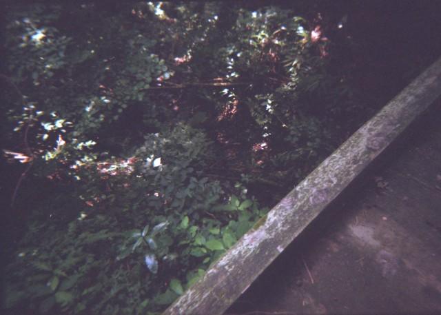 Plamodel Camera_takaosan3-3.jpg