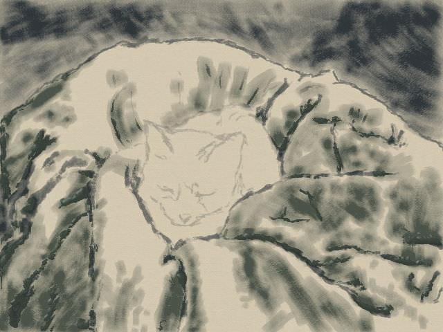 nintendo_3ds_ll_cat_sketch_20130430.jpg
