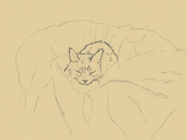 nintendo_3ds_ll_cat_sketch_20130510.jpg