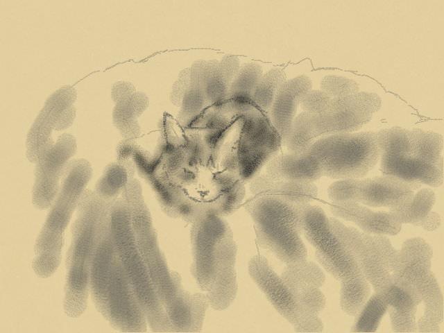 nintendo_3ds_ll_cat_sketch_20130513.jpg