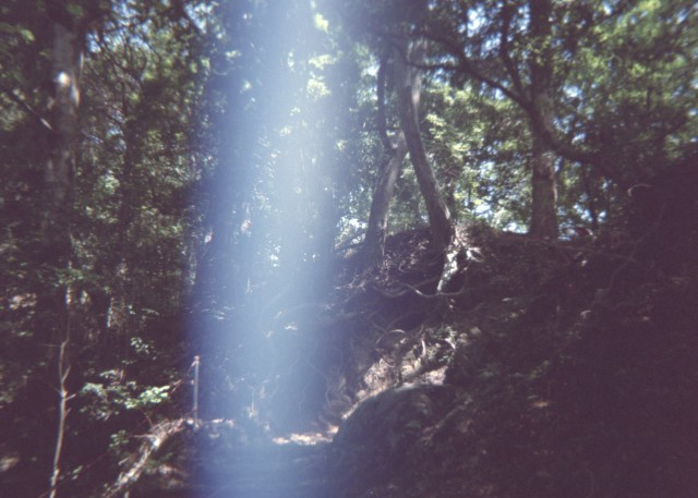 plamodel_camera_takaosan1-6.jpg