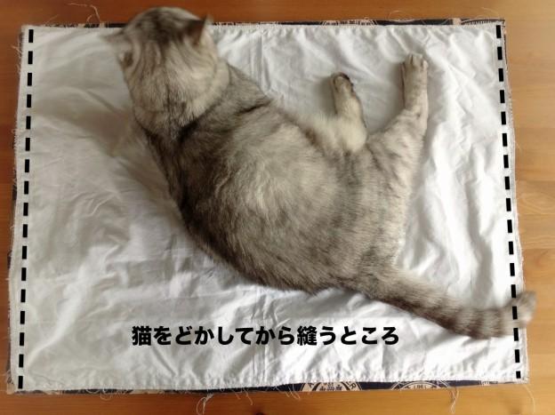 Apple iPad 3rd_cooler bag-21.jpg