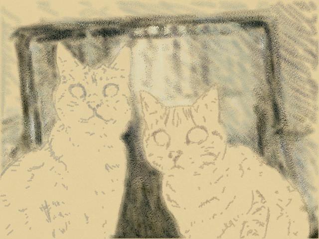 Nintendo 3DS LL_Cat Sketch_20130618.jpg