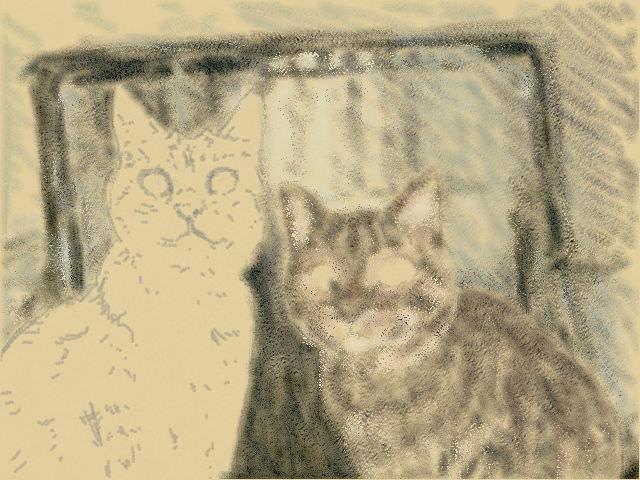Nintendo 3DS LL_Cat Sketch_20130620.jpg