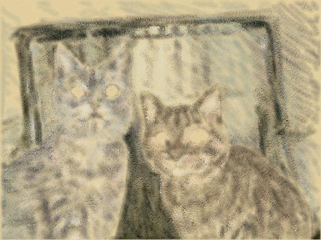 Nintendo 3DS LL_Cat Sketch_20130622.jpg