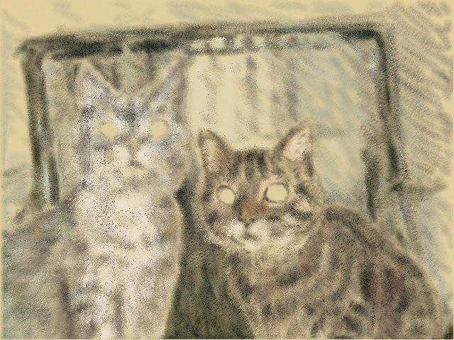 Nintendo 3DS LL_Cat Sketch_20130626.jpg