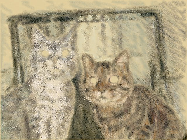 Nintendo 3DS LL_Cat Sketch_20130628.jpg