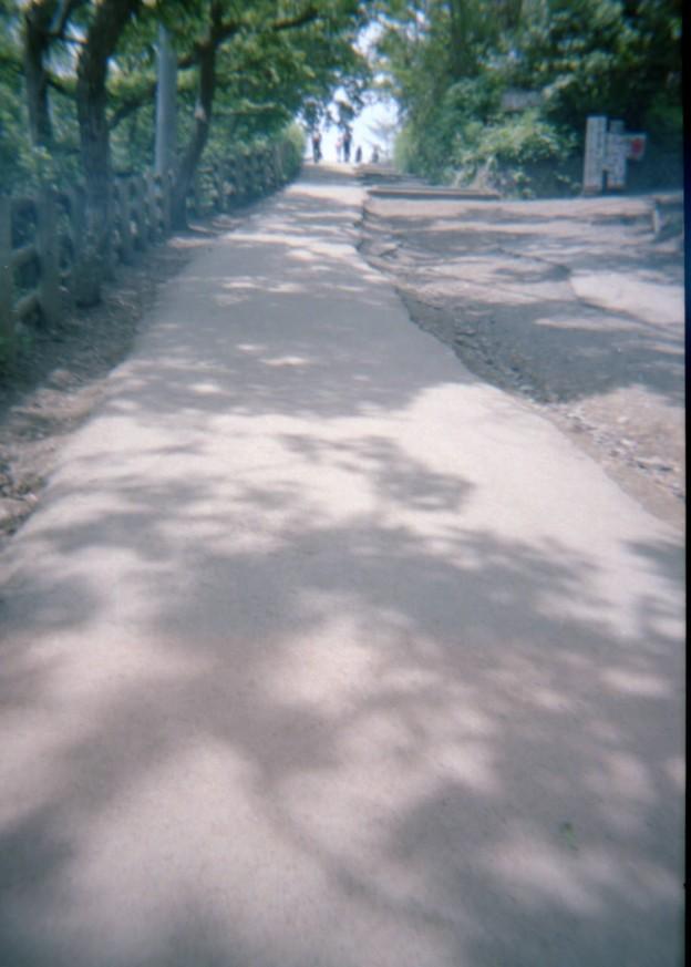 夏のこもれび高尾山 4(プラモデルカメラ)