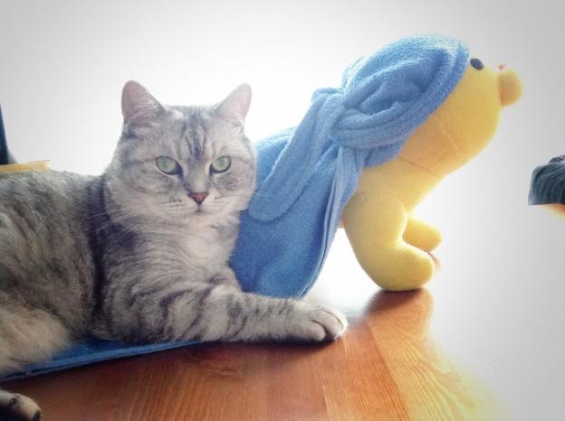 DIY Towel Bandana-30.jpg