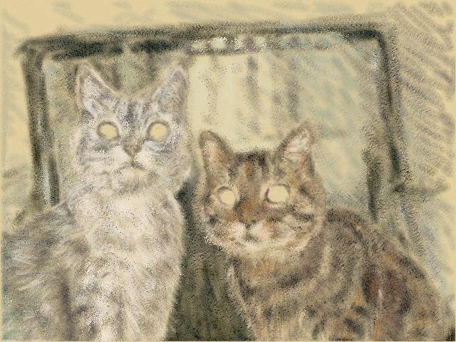 Nintendo 3DS LL_Cat Sketch_20130630.jpg