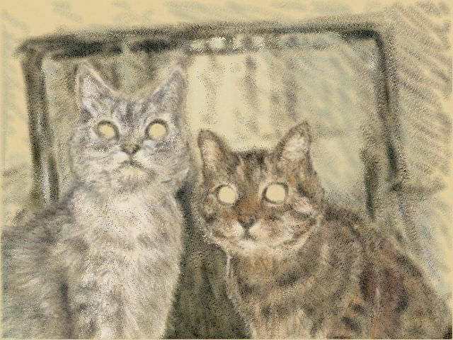 Nintendo 3DS LL_Cat Sketch_20130702.jpg
