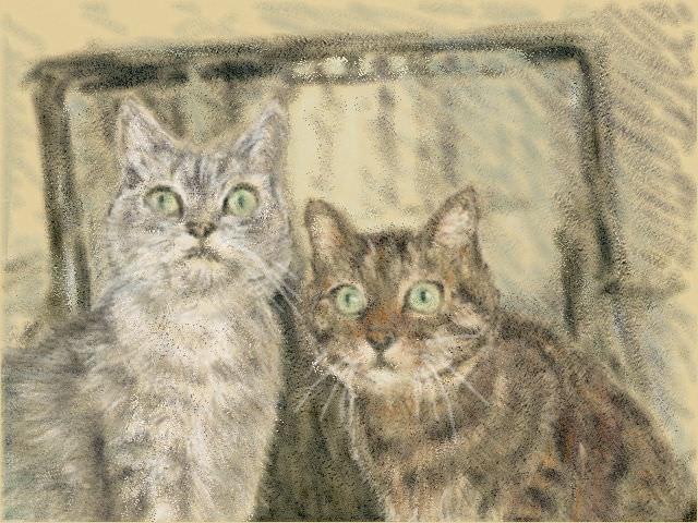 Nintendo 3DS LL_Cat Sketch_20130704.jpg