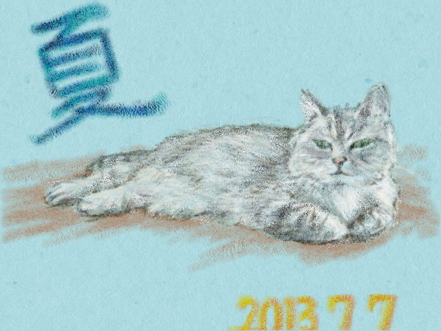 Nintendo 3DS LL_Cat Sketch_20130707.jpg