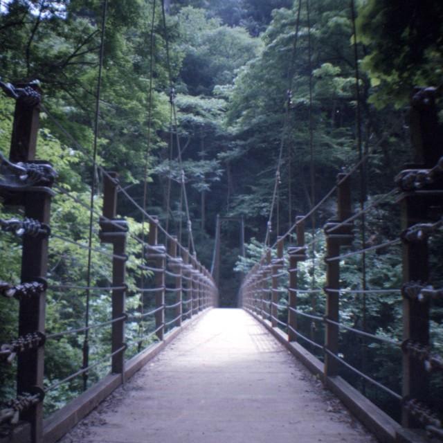 diana mini_takaosan201207-2-1.jpg