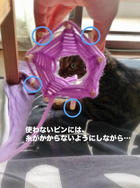 DIY_Spool Knitting_Acrylic Kitchen Sponge3-3.jpg