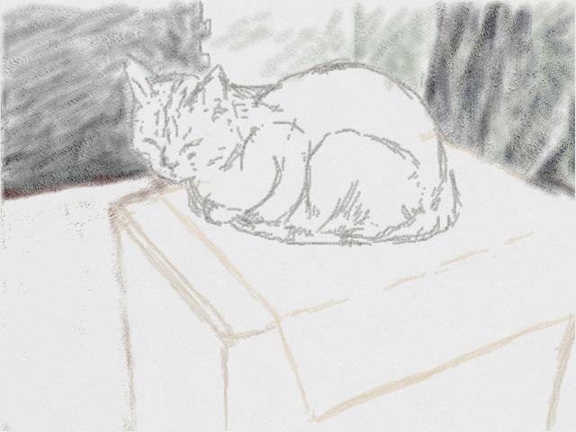Nintendo 3DS LL_Cat Sketch_20130805.jpg