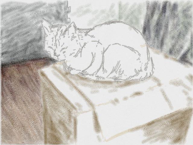 Nintendo 3DS LL_Cat Sketch_20130808.jpg