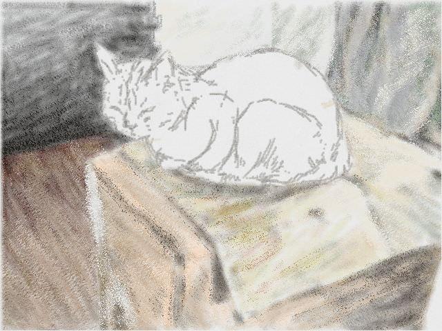 Nintendo 3DS LL_Cat Sketch_20130809
