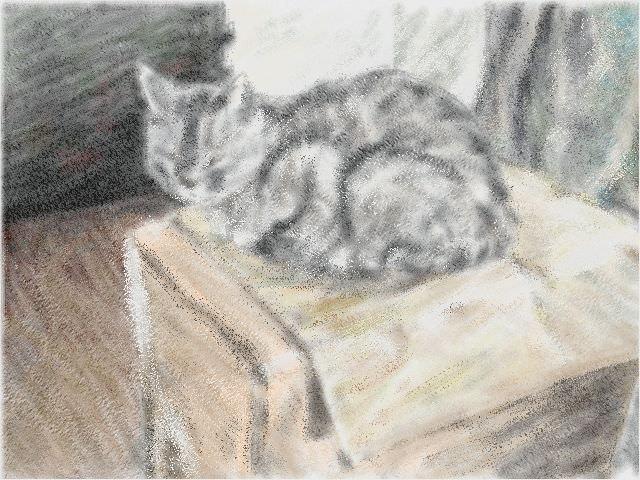 Nintendo 3DS LL_Cat Sketch_20130813.jpg