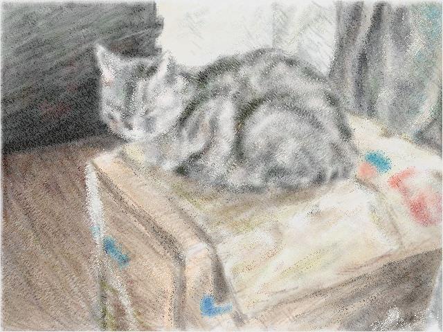 Nintendo 3DS LL_Cat Sketch_20130817.jpg
