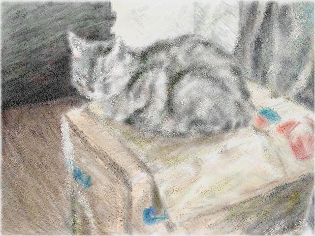 Nintendo 3DS LL_Cat Sketch_20130819.jpg