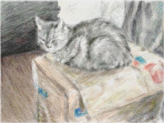 Nintendo 3DS LL_Cat Sketch_20130821.jpg