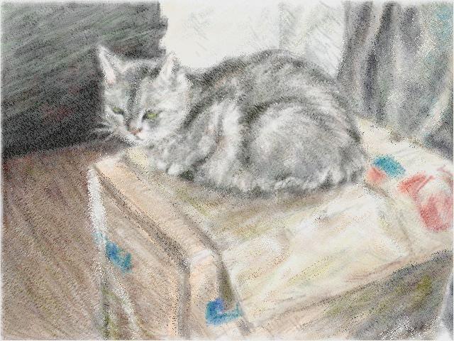 Nintendo 3DS LL_Cat Sketch_20130823.jpg