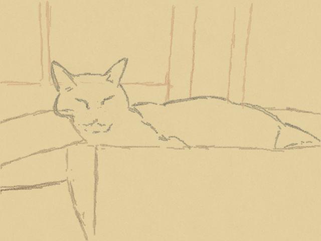 Nintendo 3DS LL_Cat Sketch_20130825.jpg