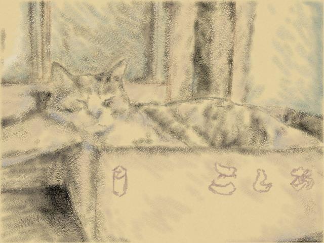 Nintendo 3DS LL_Cat Sketch_20130831.jpg