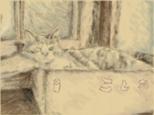 Nintendo 3DS LL_Cat Sketch_20130902.jpg