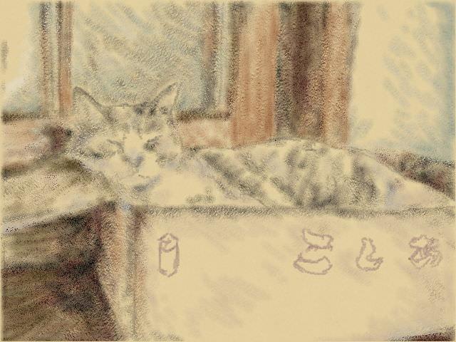 Nintendo 3DS LL_Cat Sketch_20130906.jpg