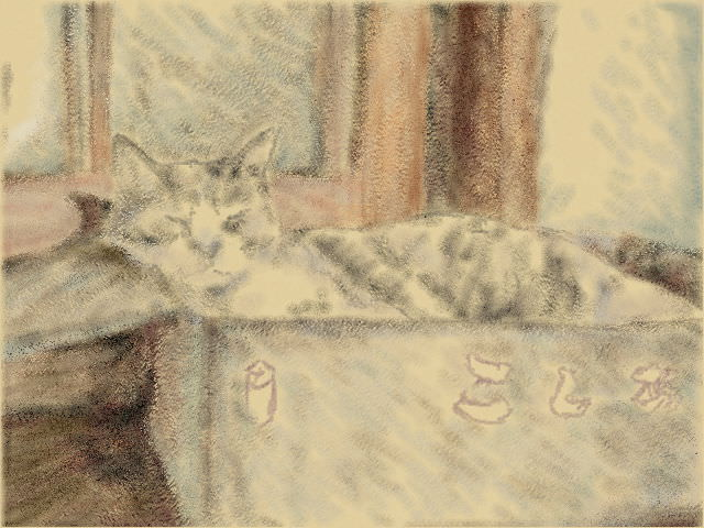 Nintendo 3DS LL_Cat Sketch_20130908.jpg