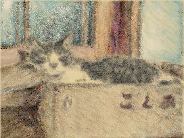Nintendo 3DS LL_Cat Sketch_20130915.jpg